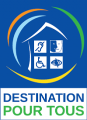 DPT_handicap.png
